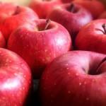 真っ赤なほっぺの病気!可愛い名前の『リンゴ病』になる