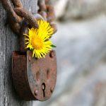 二世帯住宅のプライバシー問題!約束が守られない場合の対処法